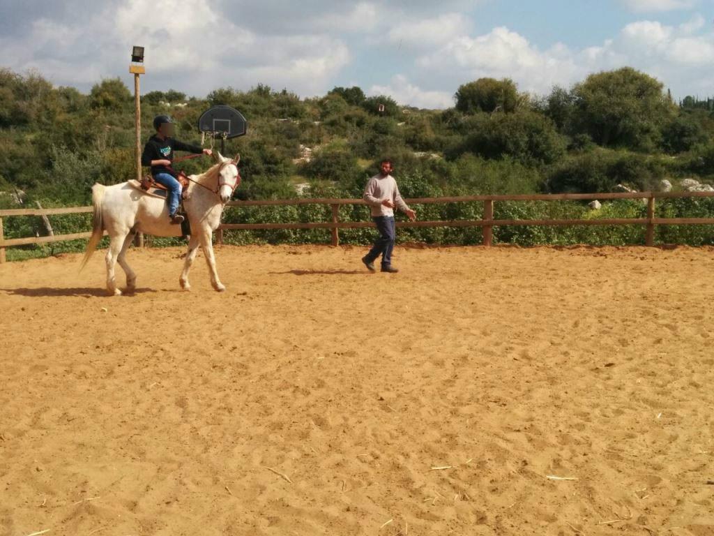 סדנה לרכיבת סוסים